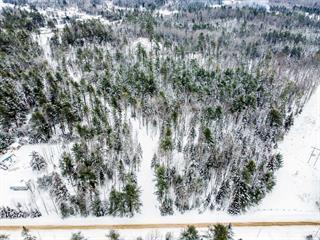 Terre à vendre à Val-des-Bois, Outaouais, 16, Impasse des Conifères, 27349039 - Centris.ca