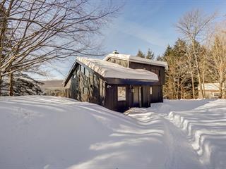 House for sale in Potton, Estrie, 262, Chemin  Schoolcraft, 17084585 - Centris.ca