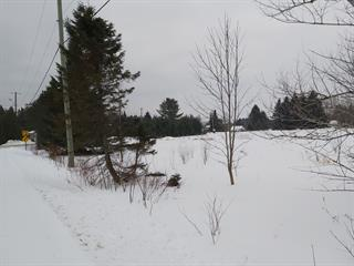 Lot for sale in Weedon, Estrie, 433, Rue  Roy Sud, 16467967 - Centris.ca