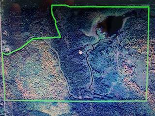 Terre à vendre à Lac-Saguay, Laurentides, Vieille route  11, 16848288 - Centris.ca