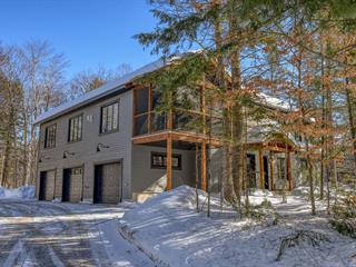 Condo for sale in Rawdon, Lanaudière, 4140, Chemin du Lac-Morgan, 25213261 - Centris.ca