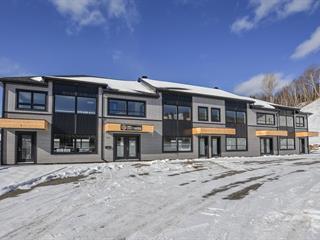 Commercial unit for sale in Saint-Faustin/Lac-Carré, Laurentides, 879, Route  117, 26227951 - Centris.ca
