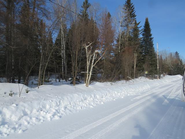 Terrain à vendre à Rivière-Rouge, Laurentides, Rue  Élie, 21092535 - Centris.ca