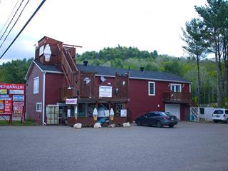 Commercial building for sale in Val-des-Bois, Outaouais, 482, Route  309, 11764913 - Centris.ca