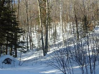 Lot for sale in Chénéville, Outaouais, Chemin  Bédard, 12307309 - Centris.ca