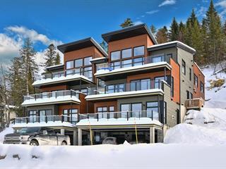 Condo à vendre à Sainte-Agathe-des-Monts, Laurentides, 248A, Rue  Saint-Venant, app. 201, 28407974 - Centris.ca