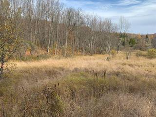Terrain à vendre à Shefford, Montérégie, Chemin du Mont-Shefford, 23590882 - Centris.ca