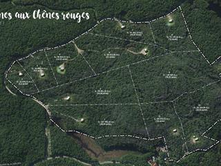 Terrain à vendre à Val-des-Monts, Outaouais, 6, Chemin du Chêne-Rouge, 10431936 - Centris.ca