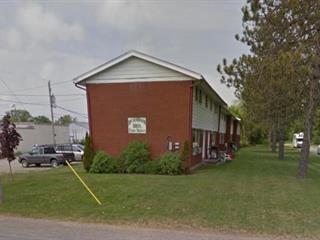 Immeuble à revenus à vendre à Shawville, Outaouais, 360, Rue  John, 16078889 - Centris.ca