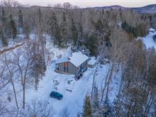 Maison à vendre à Amherst, Laurentides, 704, Route  323 Sud, 9586527 - Centris.ca
