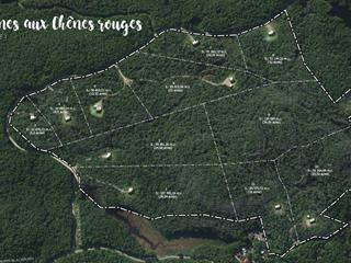 Terrain à vendre à Val-des-Monts, Outaouais, 11, Chemin du Chêne-Rouge, 9174500 - Centris.ca