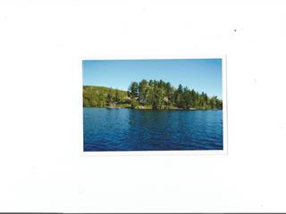 Lot for sale in Notre-Dame-de-Pontmain, Laurentides, 14, Chemin du Rocher, 24791324 - Centris.ca
