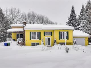 Maison à vendre à Saint-André-Avellin, Outaouais, 17, Rue de la Grotte, 14958002 - Centris.ca