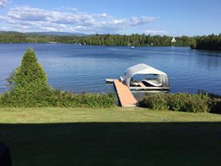 Maison à vendre à Saint-David-de-Falardeau, Saguenay/Lac-Saint-Jean, 380, 3e ch. du Lac-Clair, 12592522 - Centris.ca