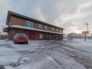 Triplex à vendre à Lévis (Les Chutes-de-la-Chaudière-Ouest), Chaudière-Appalaches, 2688, Route  Lagueux, 25785664 - Centris.ca