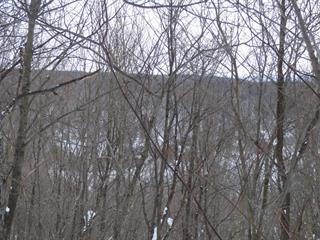 Terrain à vendre à Wentworth-Nord, Laurentides, Chemin de la Baie-Noire, 23528268 - Centris.ca