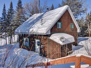 House for sale in La Minerve, Laurentides, 237, Chemin  Després, 11426248 - Centris.ca