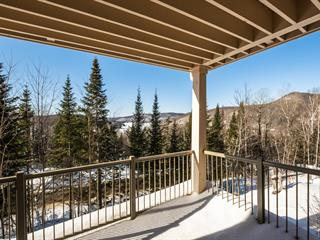 Condo for sale in Mont-Tremblant, Laurentides, 146, Rue du Mont-Plaisant, apt. 7, 25073039 - Centris.ca