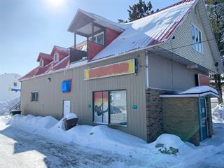 Duplex for sale in Lac-des-Écorces, Laurentides, 597, boulevard  Saint-Francois, 20928034 - Centris.ca