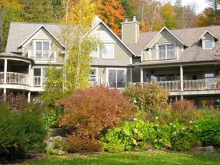 Maison à vendre à Austin, Estrie, 2221, Chemin  Nicholas-Austin, 9070659 - Centris.ca