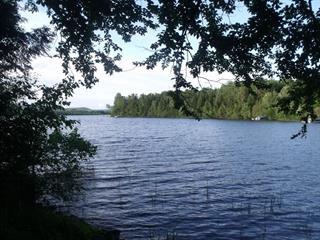 Lot for sale in Lac-des-Écorces, Laurentides, 13, Chemin des Bouleaux, 17270291 - Centris.ca