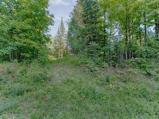Terrain à vendre à L'Isle-aux-Allumettes, Outaouais, Chemin  East-Range, 24794855 - Centris.ca