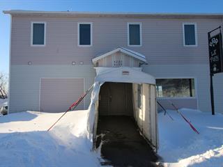 Bâtisse commerciale à vendre à Thetford Mines, Chaudière-Appalaches, 4199 - 4203, Rue du Lac-Noir, 18154035 - Centris.ca