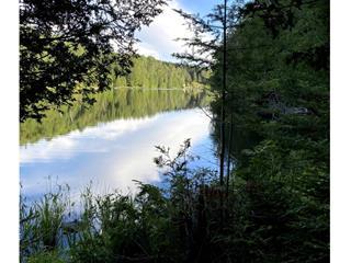 Terre à vendre à Labelle, Laurentides, Chemin du Lac-Bethlen, 16064365 - Centris.ca