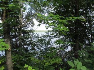 Terrain à vendre à Mont-Laurier, Laurentides, Chemin  Tour-du-Lac-des-Îles, 28368983 - Centris.ca