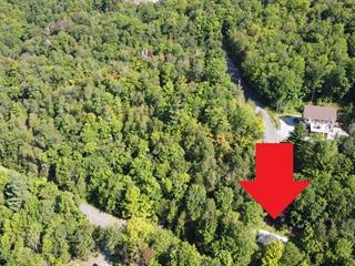 Lot for sale in Bolton-Est, Estrie, 249, Chemin du Lac-Nick, 12514425 - Centris.ca