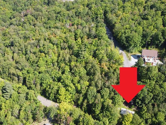 Terrain à vendre à Bolton-Est, Estrie, 249, Chemin du Lac-Nick, 12514425 - Centris.ca