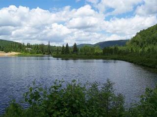 Terrain à vendre à Saint-Donat (Lanaudière), Lanaudière, Chemin du Lac-Kri, 18323023 - Centris.ca