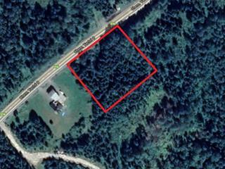 Terrain à vendre à Sainte-Apolline-de-Patton, Chaudière-Appalaches, Route  Principale, 21606986 - Centris.ca