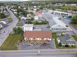 Immeuble à revenus à vendre à Saint-Ludger, Estrie, 201, Rue  La Salle, 11615731 - Centris.ca