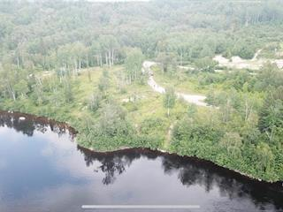 Terrain à vendre à Alma, Saguenay/Lac-Saint-Jean, 2, Chemin du Pic, 11812317 - Centris.ca