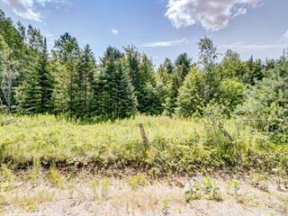 Terrain à vendre à Val-des-Monts, Outaouais, 14, Chemin des Sables, 9868752 - Centris.ca