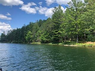 Lot for sale in Thorne, Outaouais, Chemin  Rueckwald, 18153125 - Centris.ca