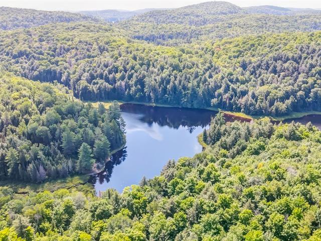 Land for sale in La Pêche, Outaouais, Chemin  Hogan, 22538607 - Centris.ca