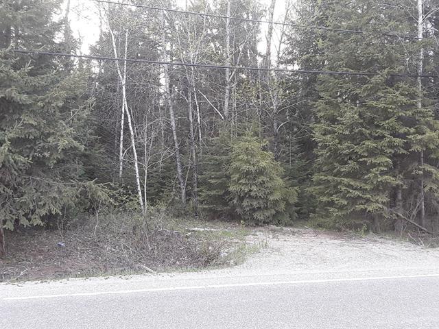 Terrain à vendre à Grand-Remous, Outaouais, Chemin  Baskatong, 26593380 - Centris.ca