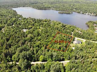Lot for sale in Saint-Marcel, Chaudière-Appalaches, Chemin du Lac-Fontaine-Claire Sud, 20729668 - Centris.ca