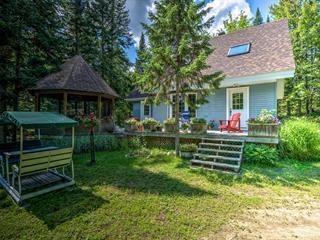 Maison à vendre à Saint-Donat (Lanaudière), Lanaudière, 40, Chemin  Houle, 28430550 - Centris.ca