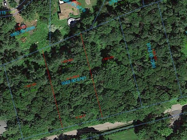 Lot for sale in Sainte-Anne-des-Lacs, Laurentides, Chemin des Alouettes, 12834679 - Centris.ca