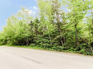 Lot for sale in Sainte-Marguerite-du-Lac-Masson, Laurentides, Chemin du Lac-Violon, 13414420 - Centris.ca