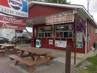 Bâtisse commerciale à vendre à Bouchette, Outaouais, 38, Rue  Principale, 21826860 - Centris.ca