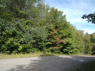Terrain à vendre à Lac-Supérieur, Laurentides, Chemin des Sapins, 20130744 - Centris.ca