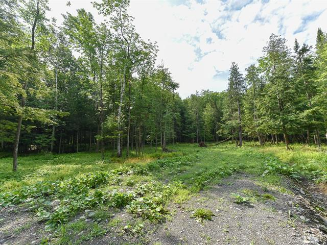 Terrain à vendre à Stanstead - Canton, Estrie, 171, Chemin  Camperdown, 24384374 - Centris.ca