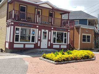 Bâtisse commerciale à vendre à Donnacona, Capitale-Nationale, 214 - 216, Avenue  Jacques-Cartier, 15453868 - Centris.ca