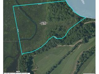 Terrain à vendre à Lac-Simon, Outaouais, Chemin de la Baie-de-l'Ours, 15474666 - Centris.ca