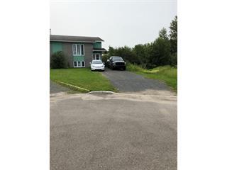 House for sale in Alma, Saguenay/Lac-Saint-Jean, 107, Rue des Quenouilles, 28466248 - Centris.ca