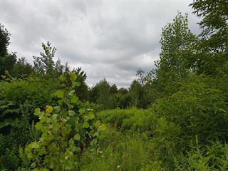 Terrain à vendre à Brigham, Montérégie, Rue  Annette, 12930594 - Centris.ca